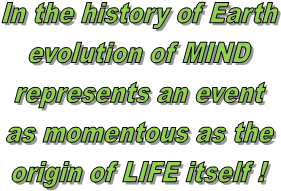 In the history of Earth
